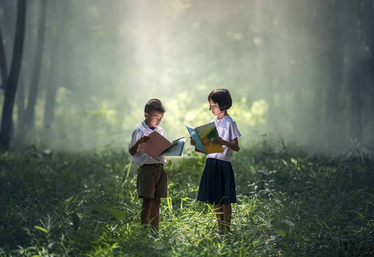 Enfants dans les bois