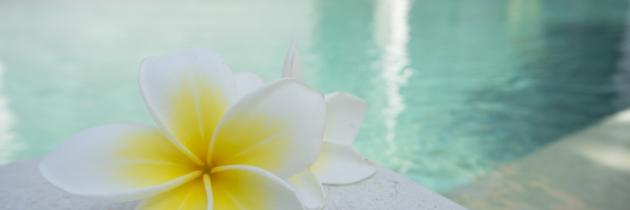 Un spa, trois types de massages