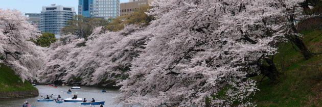 Premier voyage au Japon : Tokyo ou Kyoto ?