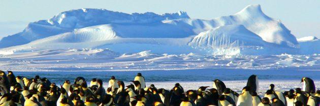 Idée de voyage : Partez pour une croisière en Antarctique