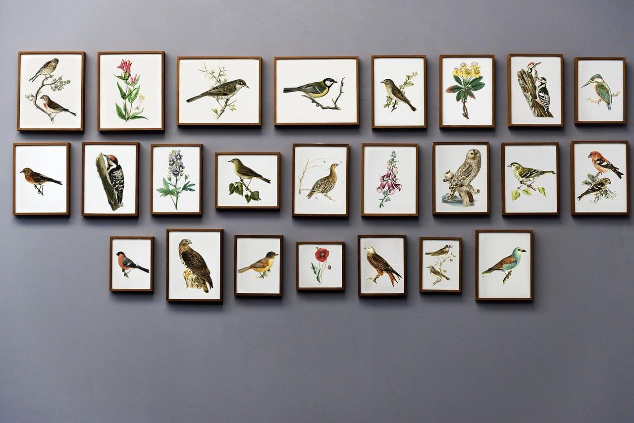 Galerie d'art avec animaux