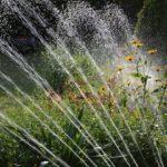 Bien arroser son jardin, sa pelouse son potager et ses plantes : trucs et astuces