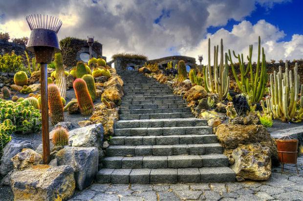 César Manrique et le jardin de cactus