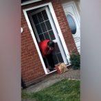 La réaction de grand-mère pour surprendre la livraison de KFC par sa petite-fille est tout
