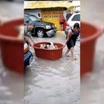 Un couple sauve des chiots après avoir tout perdu à cause des inondations de Hanna au Mexique