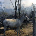 La forêt amazonienne continue de brûler en 2020 malgré les promesses de la sauver