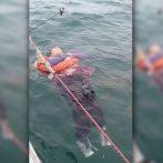 Colombienne, disparue depuis 2 ans, retrouvée vivante en mer