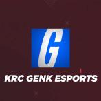 KRC Genk continue avec l'esport