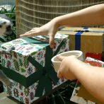 Les animaux du zoo australien déchirent les cadeaux de Noël pour lancer la saison des vacances